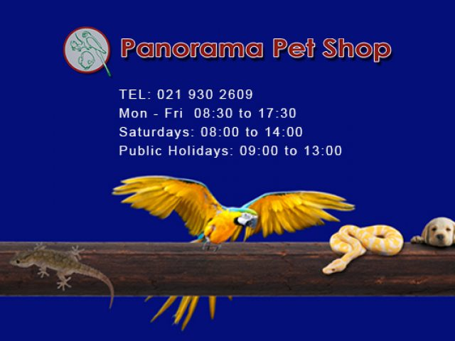 Panorama Pet Shop