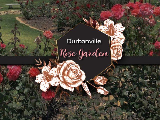 Durbanville Rose Garden